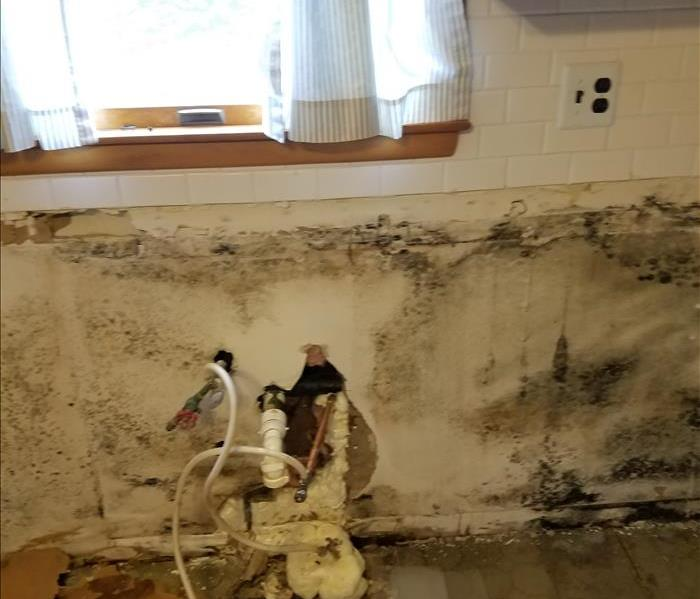Mold Behind Sink