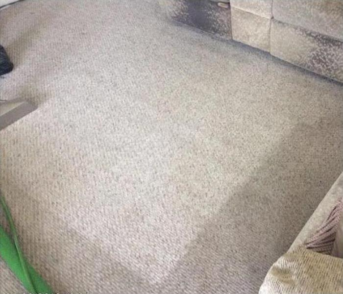 Cleaning The Benefits of a Professional Carpet Cleaning