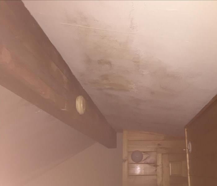 Mold Remediation Second Homes Not Visited Often Turns to Mold