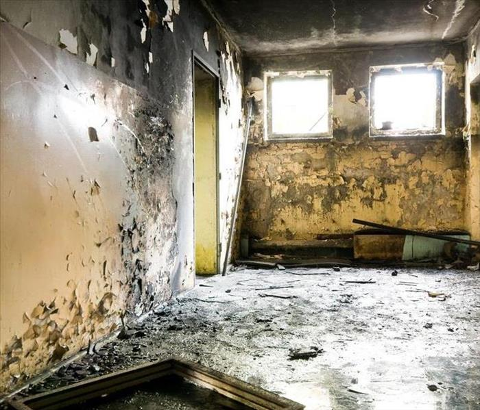 Mold Remediation The Various Scenarios of Mold Remediation