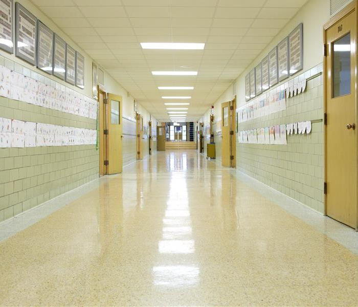 Mold Remediation Orange County School Districts - How You Can Prevent Mold In Your School Buildings