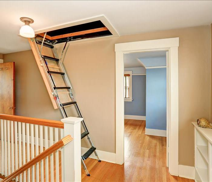 Mold Remediation How to Prevent Mold in the Attic