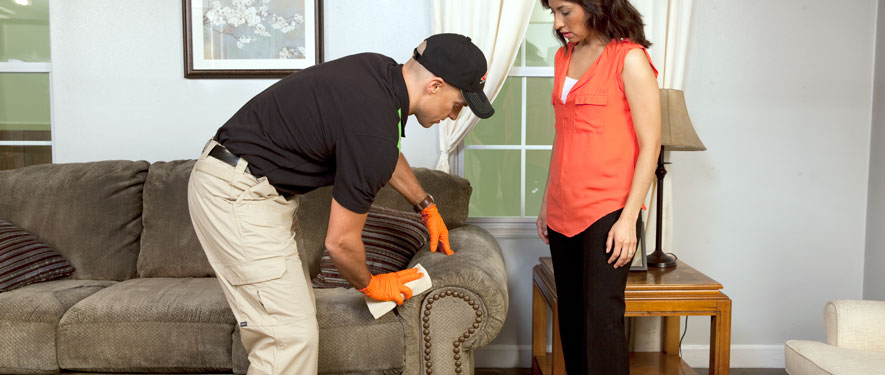 Middletown, NY carpet upholstery cleaning